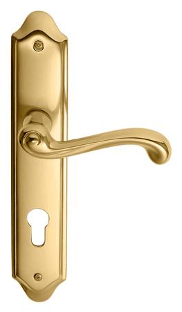 Złoty / Złoty Matowy